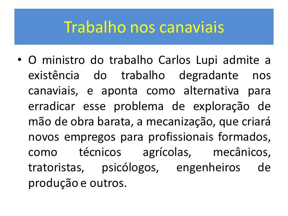 Trabalho nos canaviais O ministro do trabalho Carlos Lupi admite a existência do trabalho degradante nos canaviais, e aponta como alternativa para err
