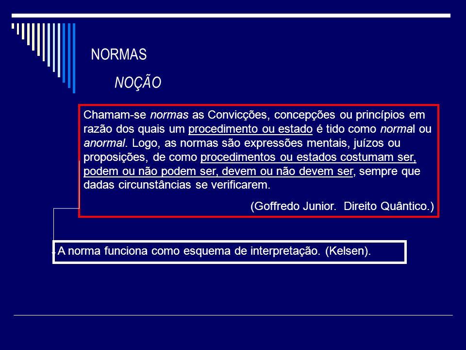 NORMA JURÍDICA NOÇÃO IMPERATIVO AUTORIZANTE.(Goffredo Junior).
