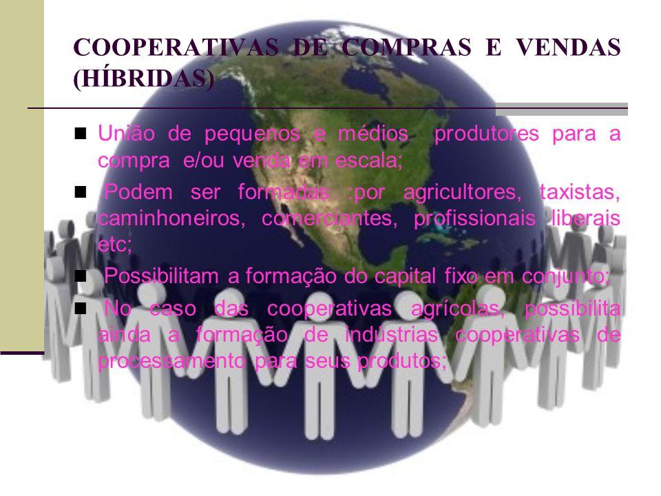 COOPERATIVAS DE COMPRAS E VENDAS (HÍBRIDAS) União de pequenos e médios produtores para a compra e/ou venda em escala; Podem ser formadas :por agricult
