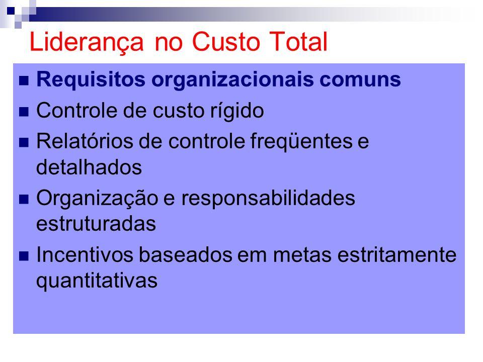 Requisitos organizacionais comuns Controle de custo rígido Relatórios de controle freqüentes e detalhados Organização e responsabilidades estruturadas