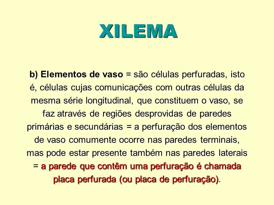 XILEMA b) Elementos de vaso = são células perfuradas, isto é, células cujas comunicações com outras células da mesma série longitudinal, que constitue