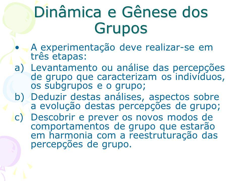 Dinâmica e Gênese dos Grupos A experimentação deve realizar-se em três etapas: a)Levantamento ou análise das percepções de grupo que caracterizam os i
