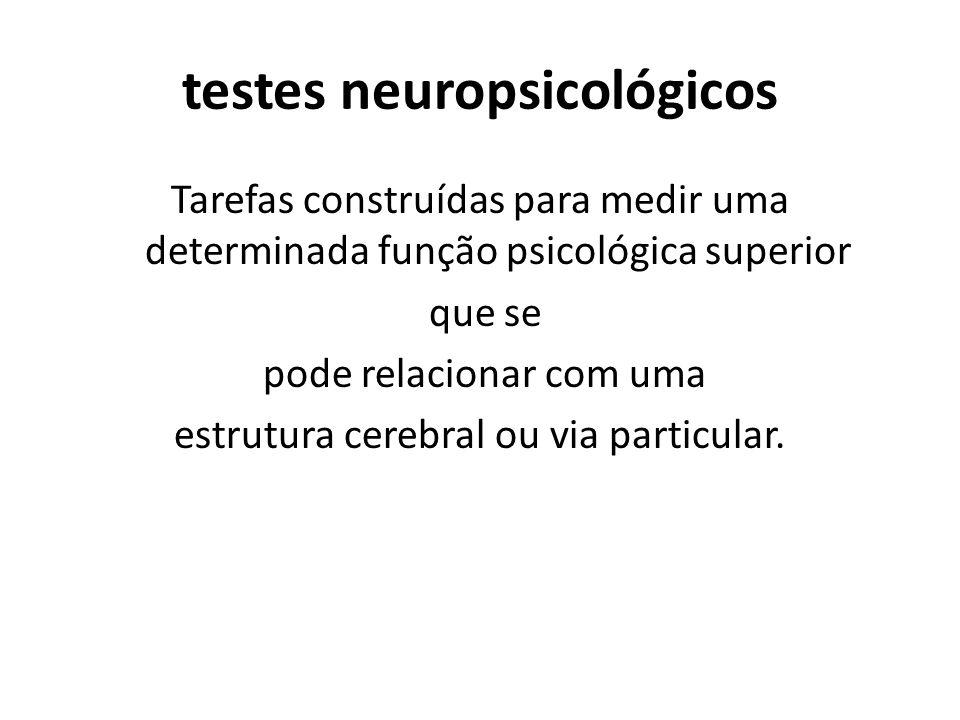 testes neuropsicológicos Tarefas construídas para medir uma determinada função psicológica superior que se pode relacionar com uma estrutura cerebral