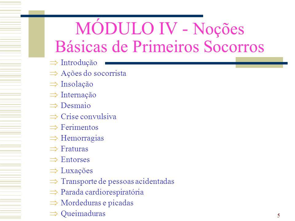 6 MÓDULO V - Norma Regulamentadora - NR 5 Comissão Interna de Prevenção de Acidentes - CIPA Anexo II Quadro I Quadro I - A