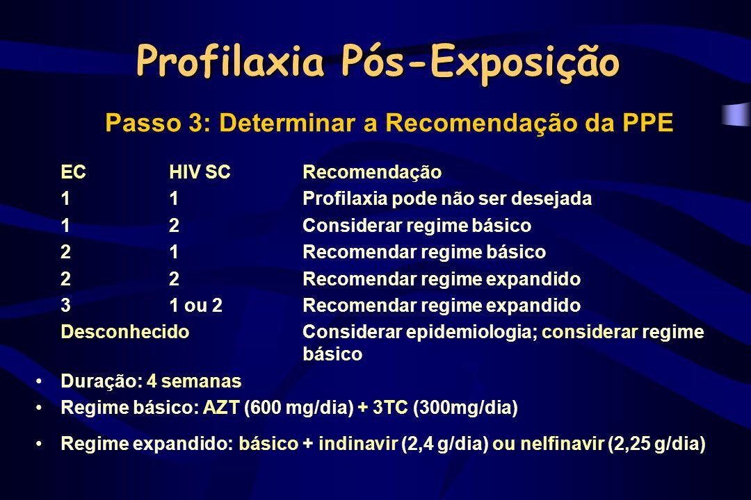 Recomendações 2001 - CDC –Atualização de recomendações para HBV e HCV –Possibilidade de outros regimes de drogas –Descrição de falências com PPE –Reforço da necessidade de seguimento MMWR 2001;50 (RR-11) Regime básico:Regime expandido: AZT+3TC+ IDV ou NFV ou EFV ou ABC 3TC+d4T ou Kaletra d4T+ddI