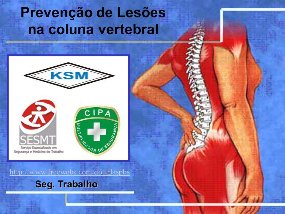 MUTUAL DE SEGURIDAD 1 Prevenção de Lesões na coluna vertebral Seg. Trabalho http://www.freewebs.com/douglaspbs