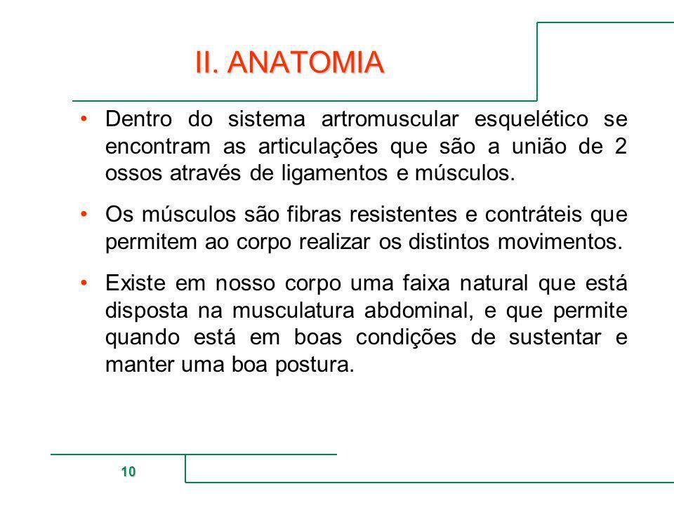 MUTUAL DE SEGURIDAD 10 II. ANATOMIA Dentro do sistema artromuscular esquelético se encontram as articulações que são a união de 2 ossos através de lig