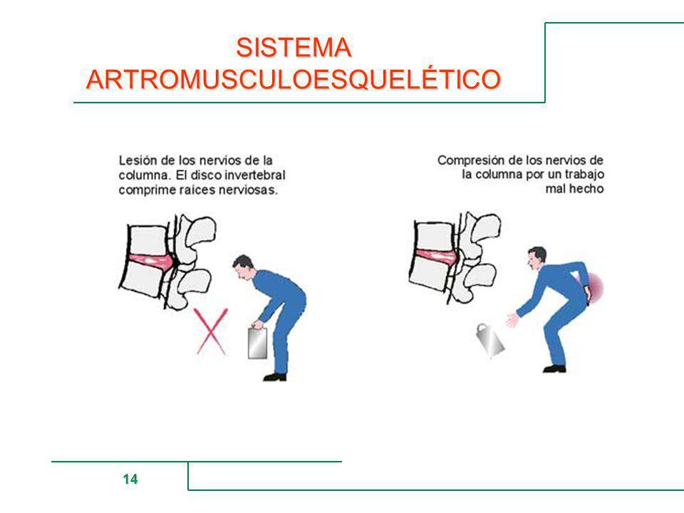 MUTUAL DE SEGURIDAD 14 SISTEMA ARTROMUSCULOESQUELÉTICO