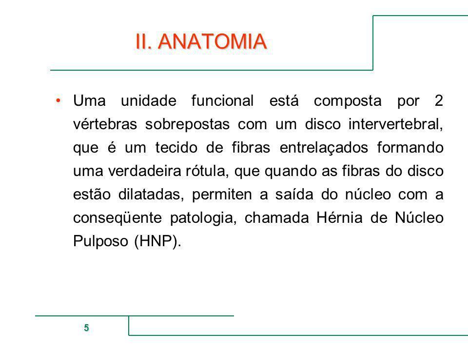 MUTUAL DE SEGURIDAD 5 II. ANATOMIA Uma unidade funcional está composta por 2 vértebras sobrepostas com um disco intervertebral, que é um tecido de fib