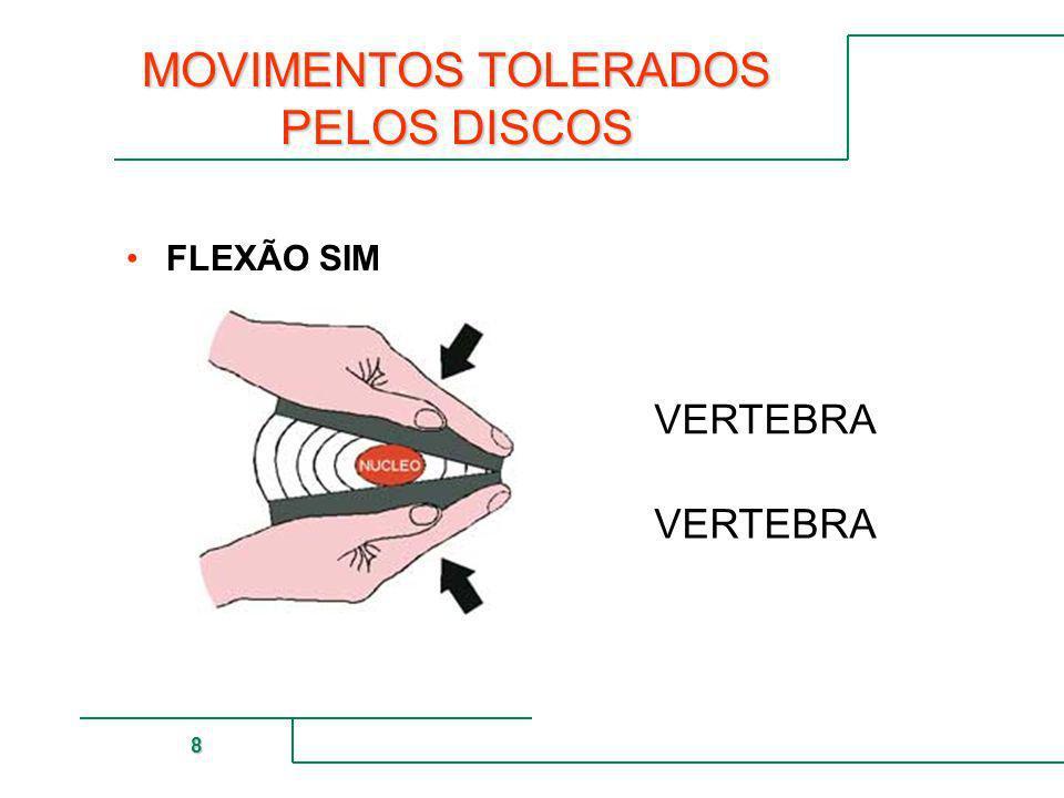 MUTUAL DE SEGURIDAD 8 MOVIMENTOS TOLERADOS PELOS DISCOS FLEXÃO SIM VERTEBRA