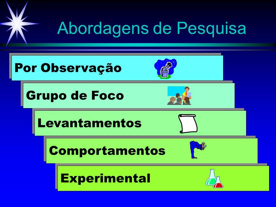 Abordagens de Pesquisa Comportamentos Grupo de Foco Levantamentos Experimental Por Observação