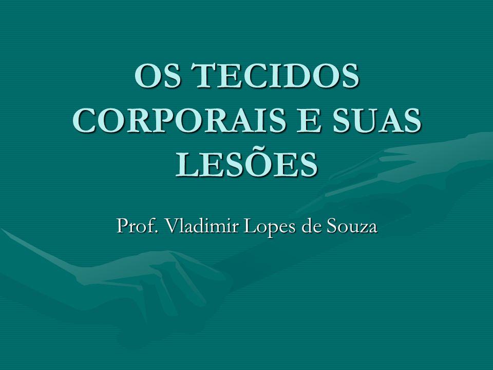 OS TECIDOS CORPORAIS E SUAS LESÕES Prof. Vladimir Lopes de Souza