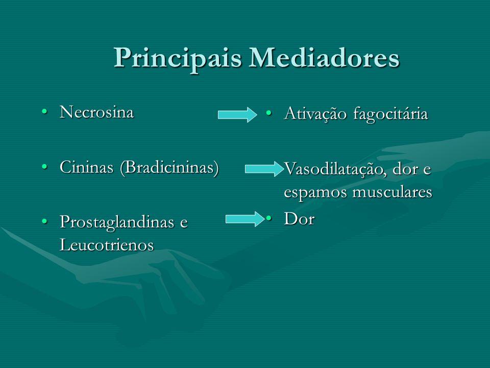 Principais Mediadores NecrosinaNecrosina Cininas (Bradicininas)Cininas (Bradicininas) Prostaglandinas e LeucotrienosProstaglandinas e Leucotrienos Ati