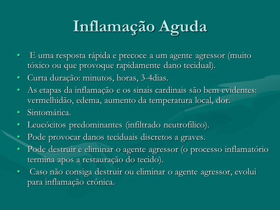 Inflamação Aguda E uma resposta rápida e precoce a um agente agressor (muito tóxico ou que provoque rapidamente dano tecidual). E uma resposta rápida