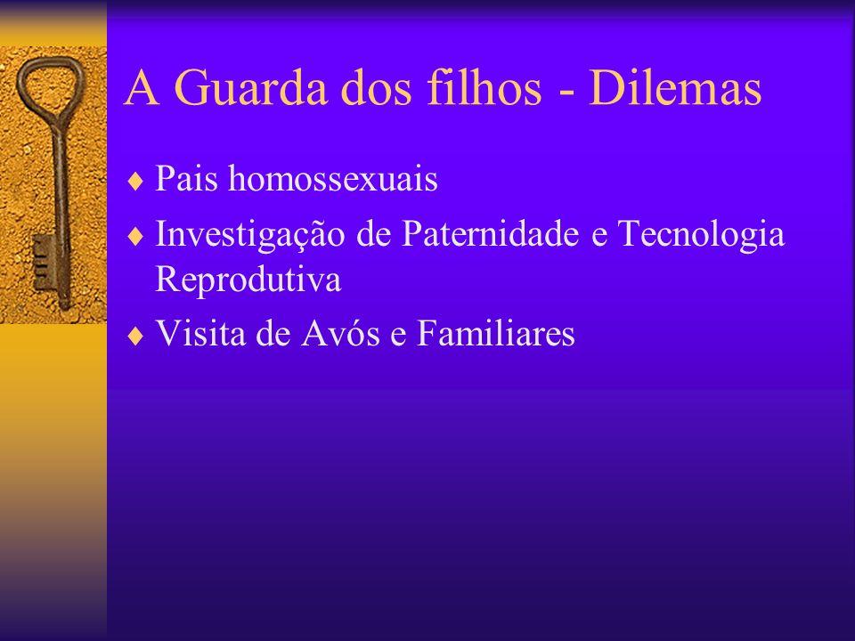 A Guarda dos filhos - Dilemas Pais homossexuais Investigação de Paternidade e Tecnologia Reprodutiva Visita de Avós e Familiares