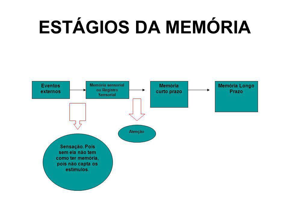 ESTÁGIOS DA MEMÓRIA Eventos externos Memória sensorial ou Registro Sensorial Memória curto prazo Memória Longo Prazo Sensação. Pois sem ela não tem co