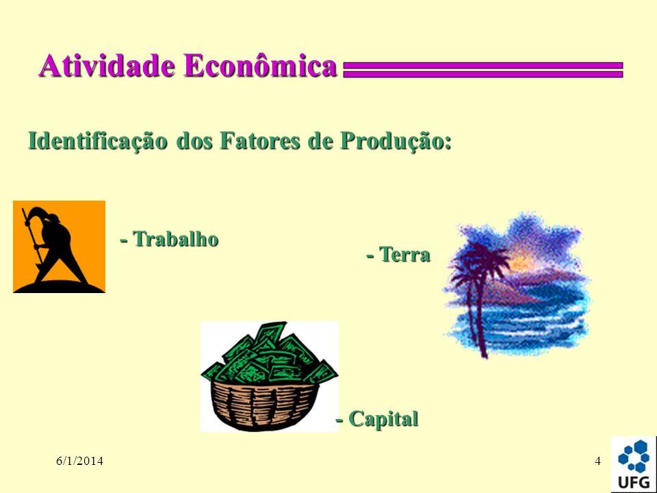 6/1/20144 Identificação dos Fatores de Produção: Atividade Econômica - Trabalho - Terra - Capital