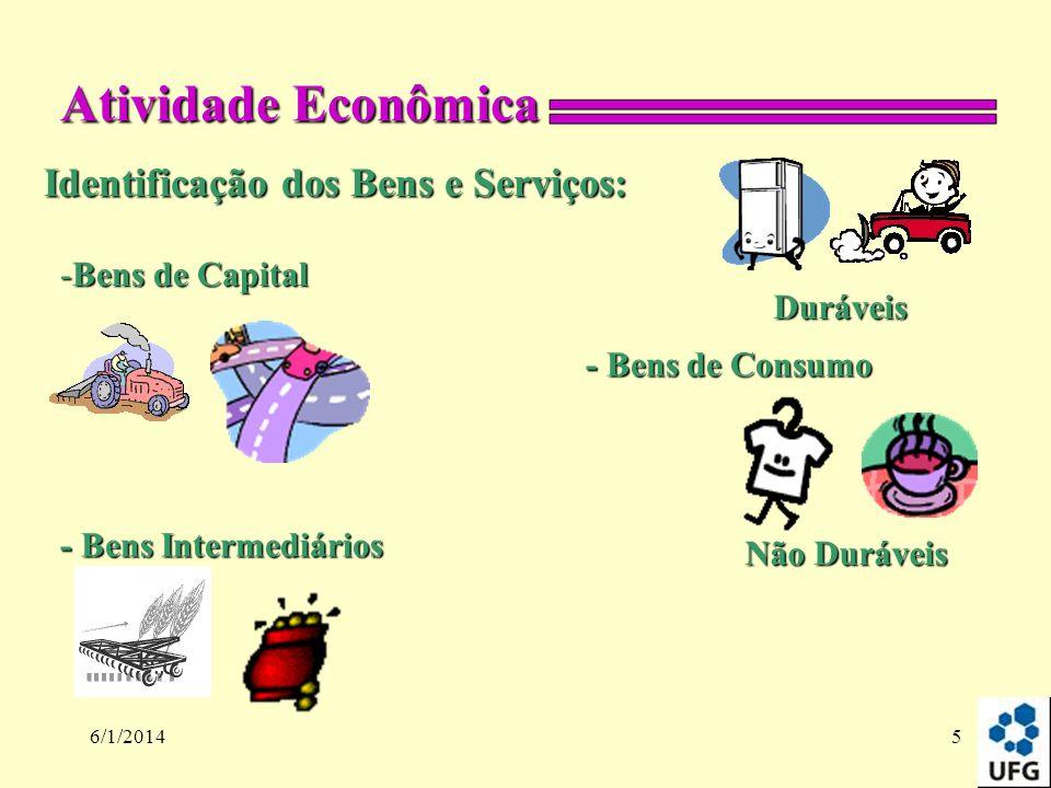 6/1/20145 Identificação dos Bens e Serviços: Atividade Econômica Duráveis Não Duráveis -Bens de Capital - Bens de Consumo - Bens Intermediários