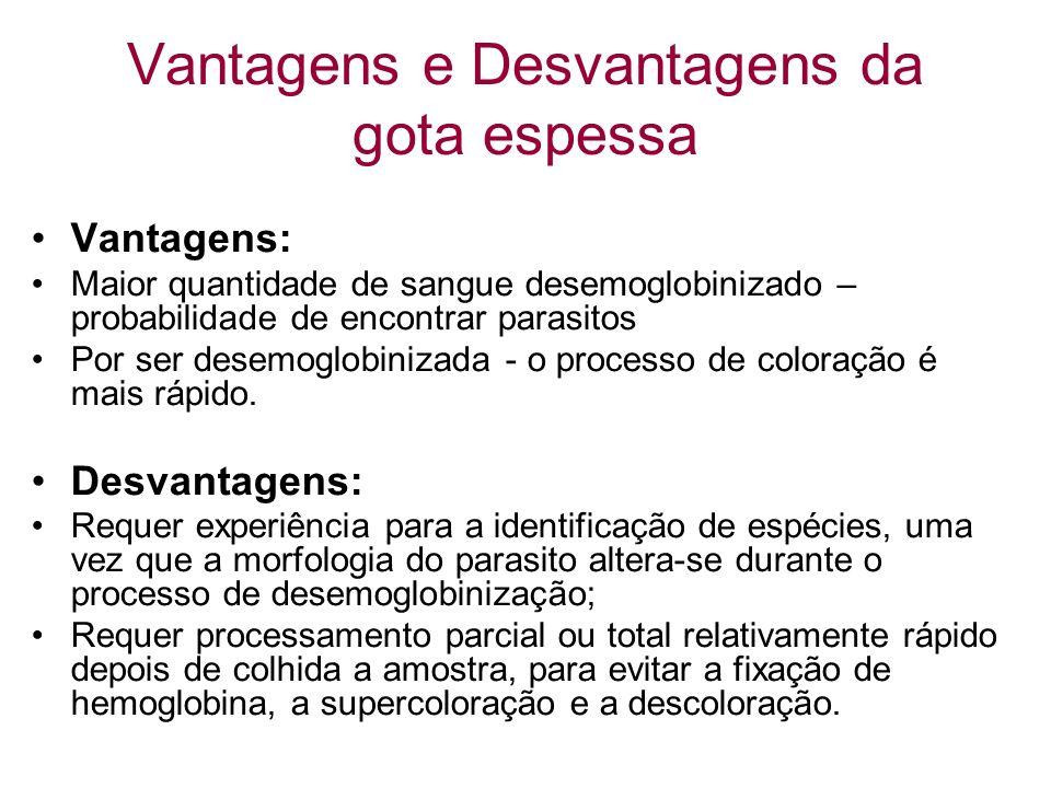 Vantagens e Desvantagens da gota espessa Vantagens: Maior quantidade de sangue desemoglobinizado – probabilidade de encontrar parasitos Por ser desemo