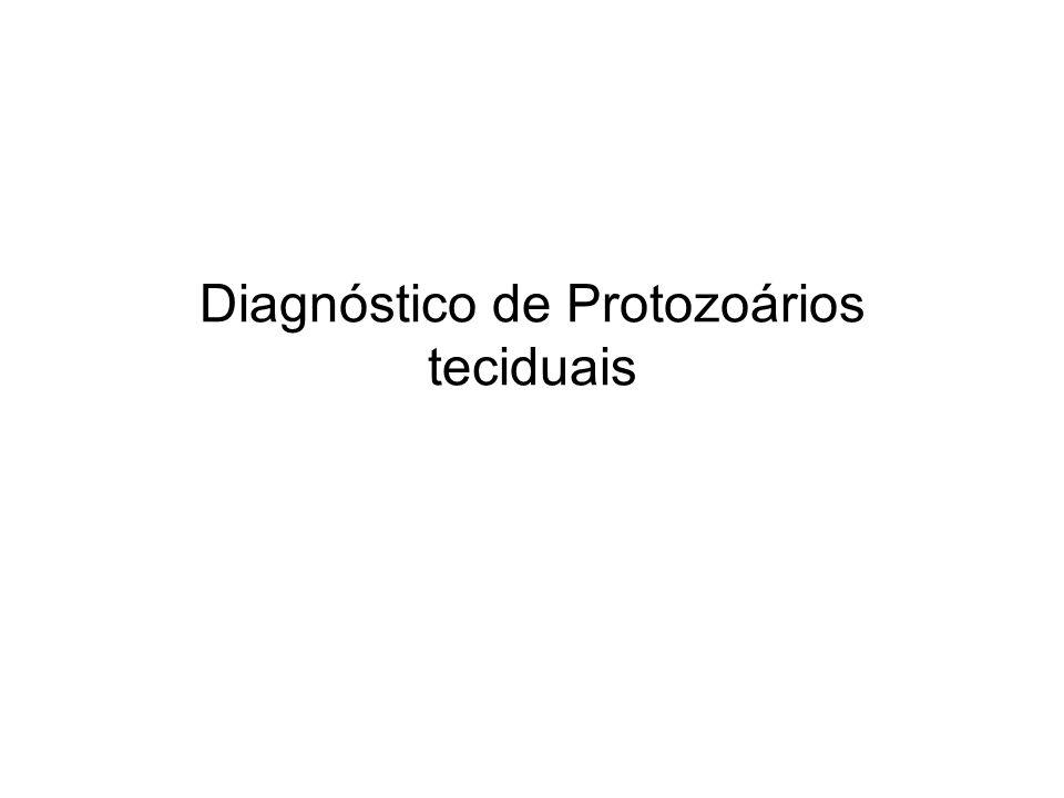 Diagnóstico de Protozoários teciduais