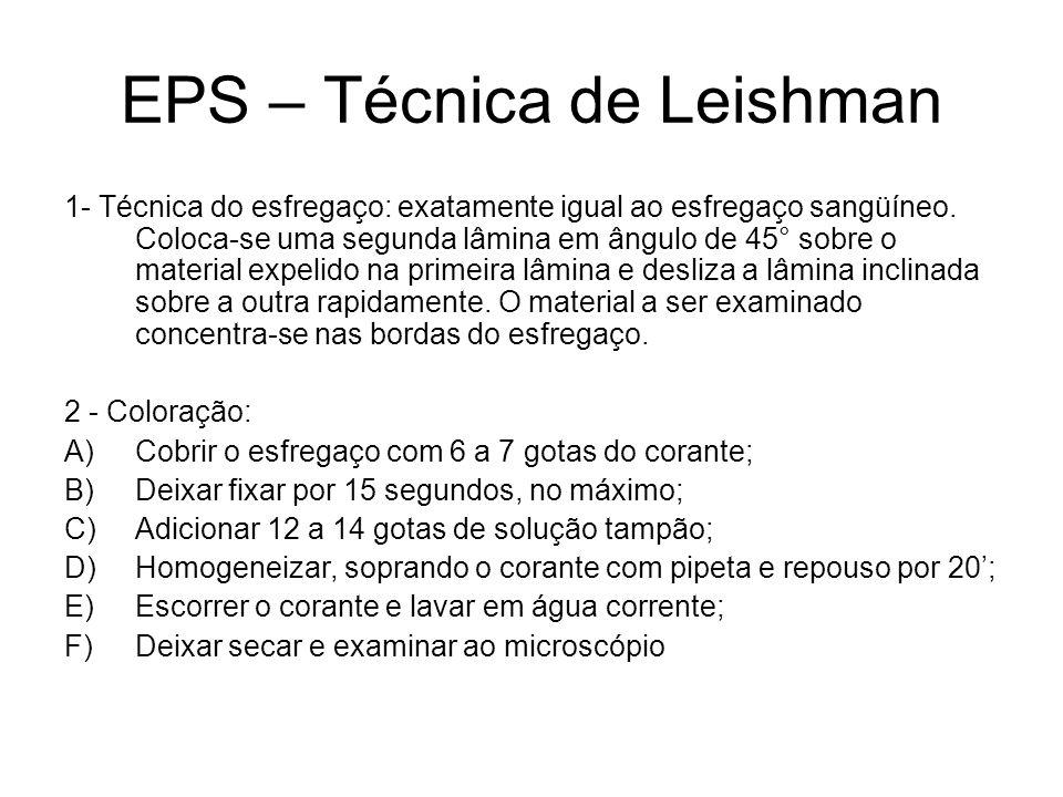 EPS – Técnica de Leishman 1- Técnica do esfregaço: exatamente igual ao esfregaço sangüíneo. Coloca-se uma segunda lâmina em ângulo de 45° sobre o mate