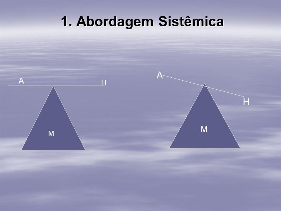 1. Abordagem Sistêmica 1. Abordagem Sistêmica M H A M A H