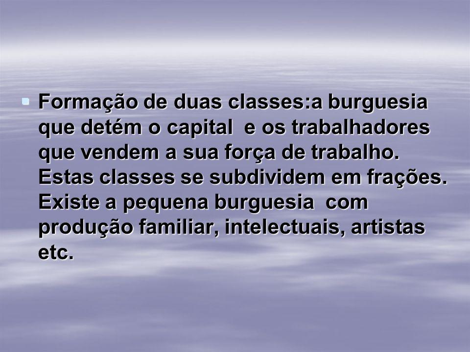 Formação de duas classes:a burguesia que detém o capital e os trabalhadores que vendem a sua força de trabalho. Estas classes se subdividem em frações