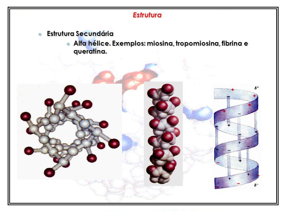 4 Níveis: 4 Níveis: Interações moleculares Interações moleculares Estrutura