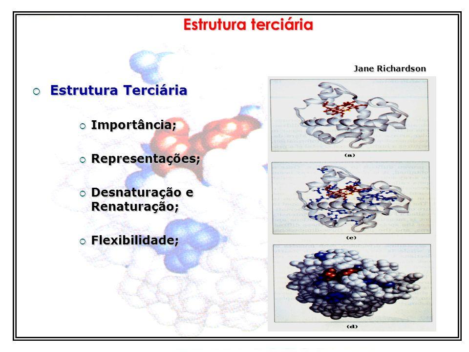 Estrutura Estrutura Secundária Estrutura Secundária Folhas beta : ex. fibroína da seda Folhas beta : ex. fibroína da seda
