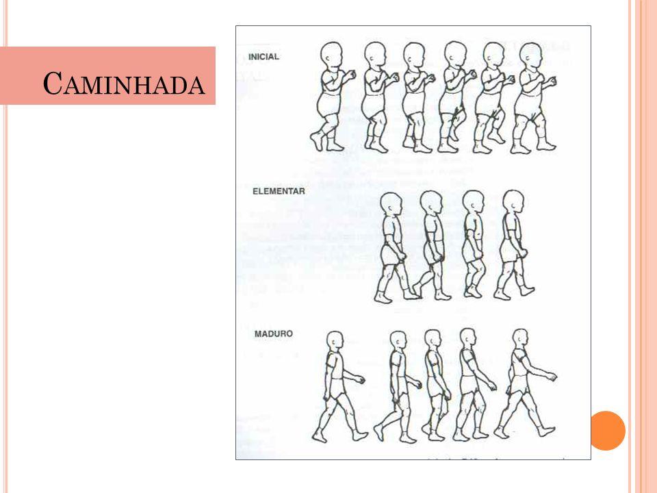 C AMINHADA