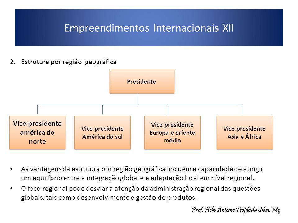 Empreendimentos Internacionais XII 2.Estrutura por região geográfica As vantagens da estrutura por região geográfica incluem a capacidade de atingir u