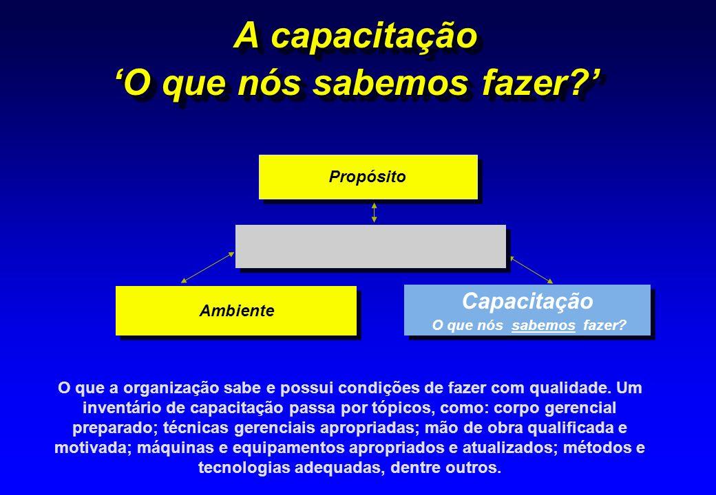 A capacitação O que nós sabemos fazer? Capacitação O que nós sabemos fazer? Capacitação O que nós sabemos fazer? Ambiente Propósito O que a organizaçã
