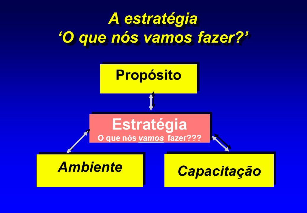 A estratégia O que nós vamos fazer? Ambiente Propósito Propósito Capacitação Estratégia O que nós vamos fazer??? Estratégia O que nós vamos fazer???
