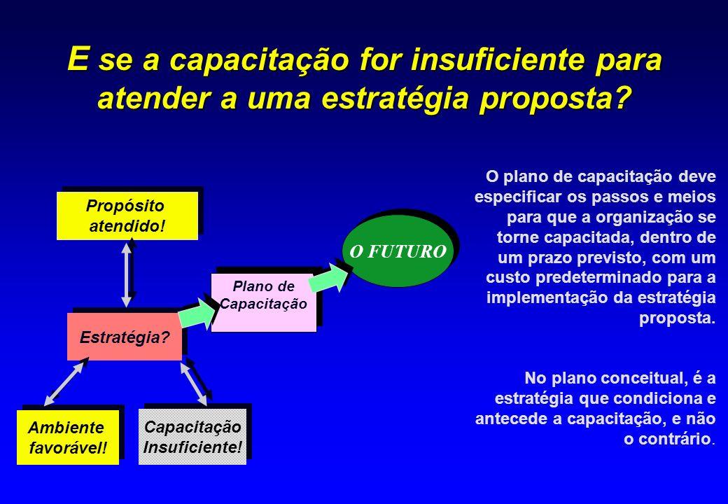E se a capacitação for insuficiente para atender a uma estratégia proposta? Capacitação Insuficiente! Capacitação Insuficiente! Ambiente favorável! Am