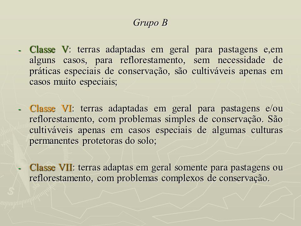 Grupo B - Classe V: terras adaptadas em geral para pastagens e,em alguns casos, para reflorestamento, sem necessidade de práticas especiais de conserv