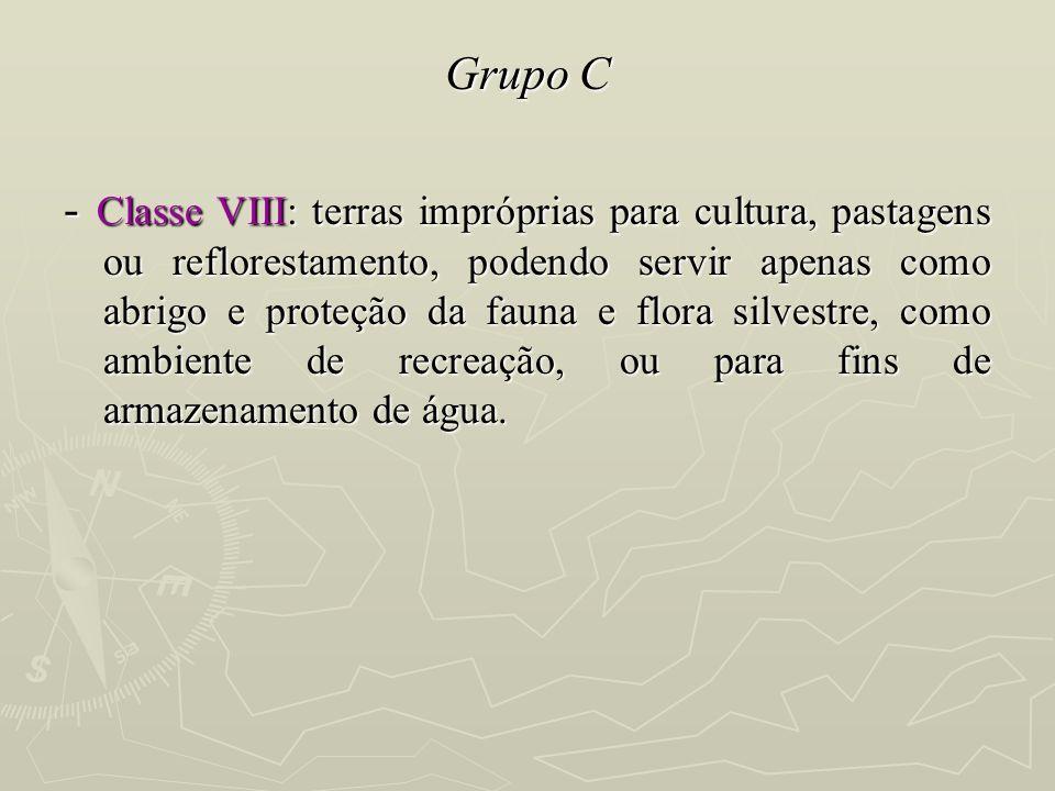 Grupo C - Classe VIII: terras impróprias para cultura, pastagens ou reflorestamento, podendo servir apenas como abrigo e proteção da fauna e flora sil