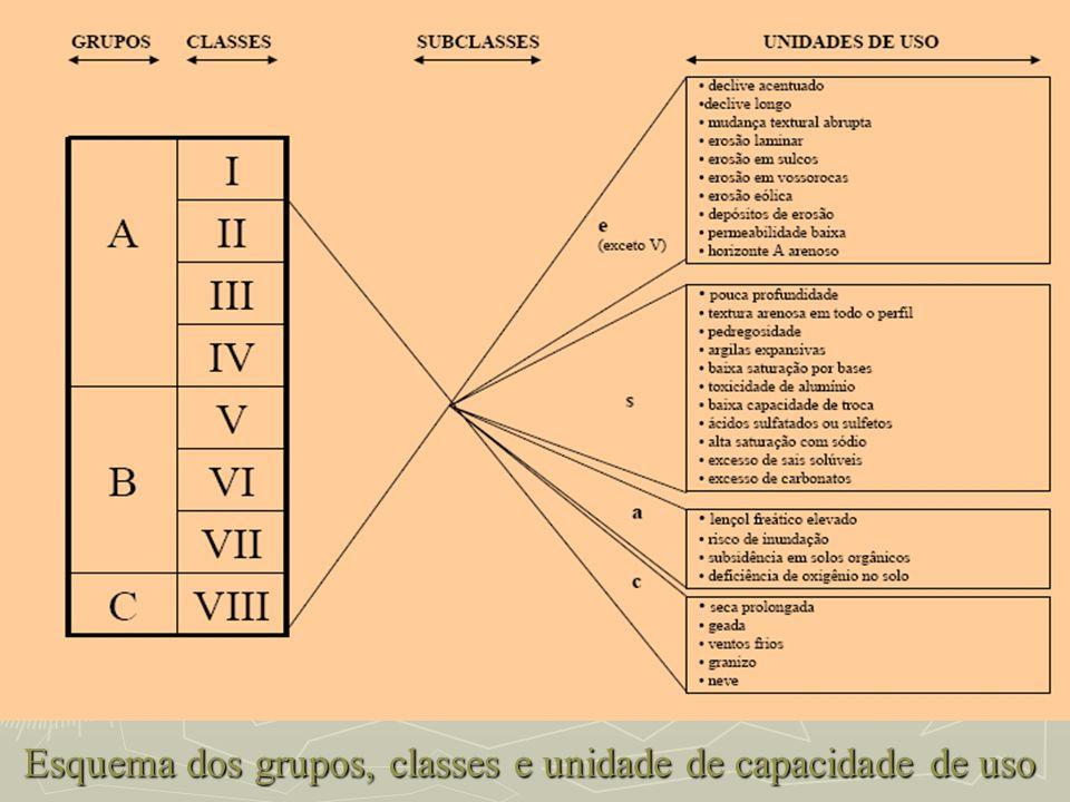 Esquema dos grupos, classes e unidade de capacidade de uso Esquema dos grupos, classes e unidade de capacidade de uso