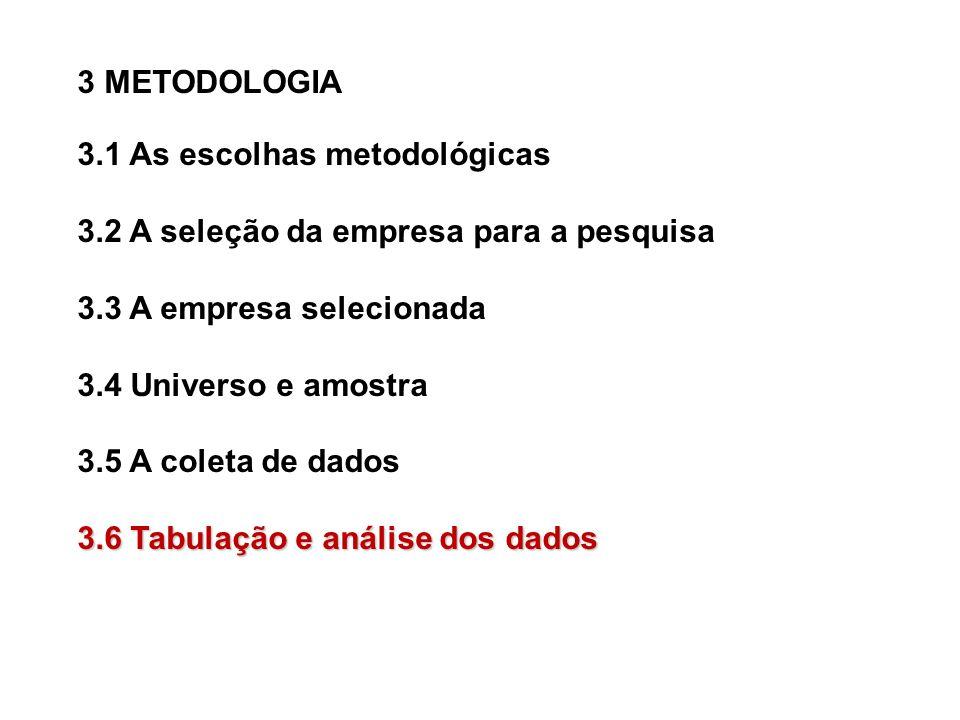 3 METODOLOGIA 3.1 As escolhas metodológicas 3.2 A seleção da empresa para a pesquisa 3.3 A empresa selecionada 3.4 Universo e amostra 3.5 A coleta de