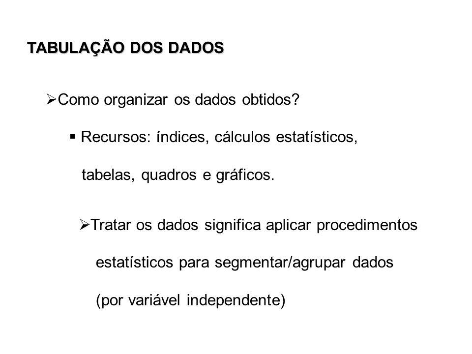 Como organizar os dados obtidos? Recursos: índices, cálculos estatísticos, tabelas, quadros e gráficos. Tratar os dados significa aplicar procedimento