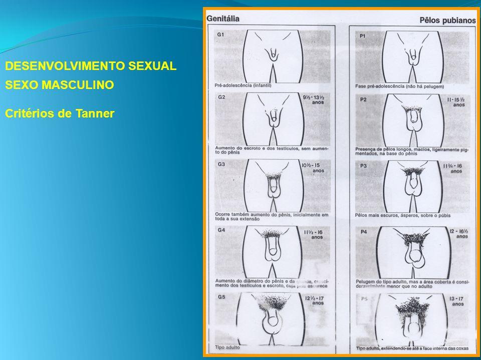 DESENVOLVIMENTO SEXUAL SEXO MASCULINO Critérios de Tanner