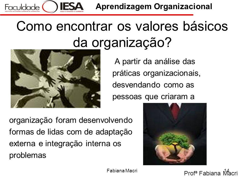 Profª Fabiana Macri Aprendizagem Organizacional Fabiana Macri14 Como encontrar os valores básicos da organização? A partir da análise das práticas org