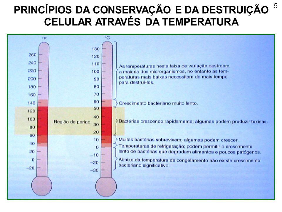 PRINCÍPIOS DA CONSERVAÇÃO E DA DESTRUIÇÃO CELULAR ATRAVÉS DA TEMPERATURA 5