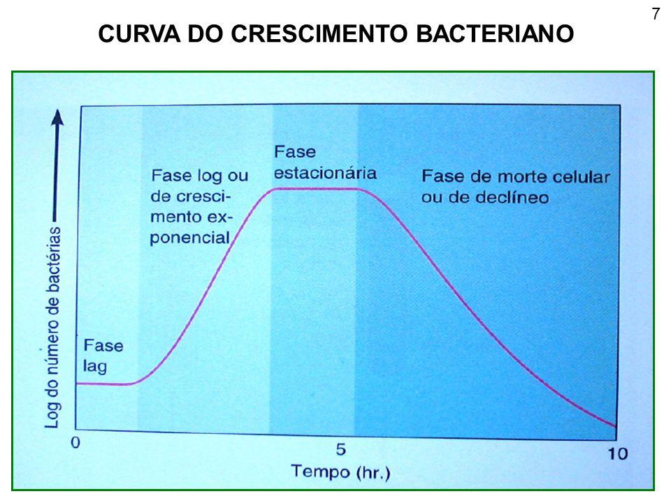 CURVA DO CRESCIMENTO BACTERIANO 7