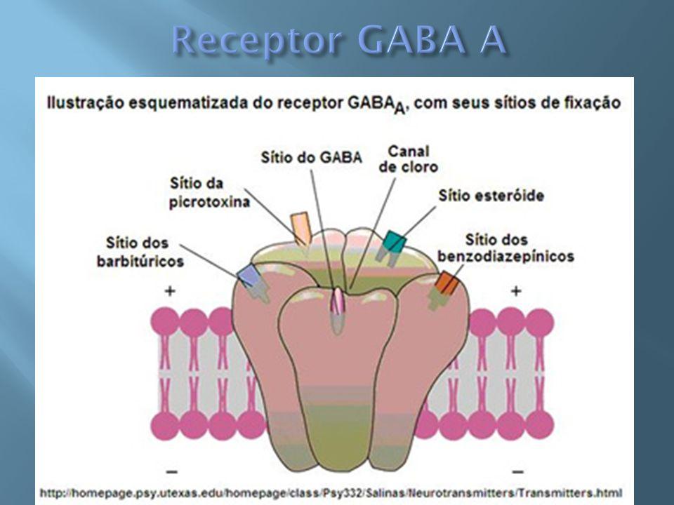Não é modulado por BDZ Liga-se ao relaxante muscular baclofen Não parece estar associado aos mecanismos de ansiedade Pouco conhecidos