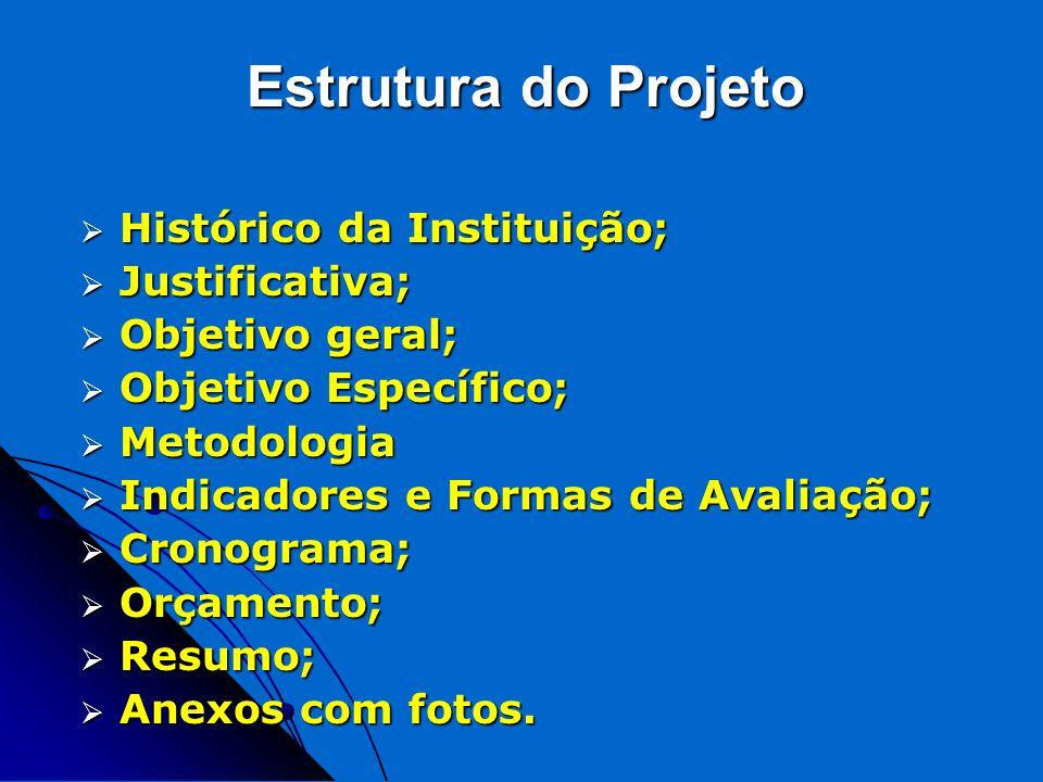 Estrutura do Projeto Histórico da Instituição; Histórico da Instituição; Justificativa; Justificativa; Objetivo geral; Objetivo geral; Objetivo Especí