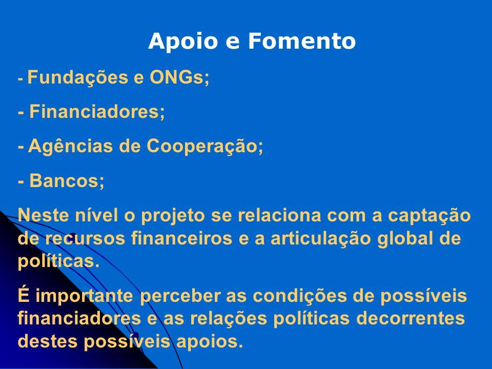 Apoio e Fomento - Fundações e ONGs; - Financiadores; - Agências de Cooperação; - Bancos; Neste nível o projeto se relaciona com a captação de recursos