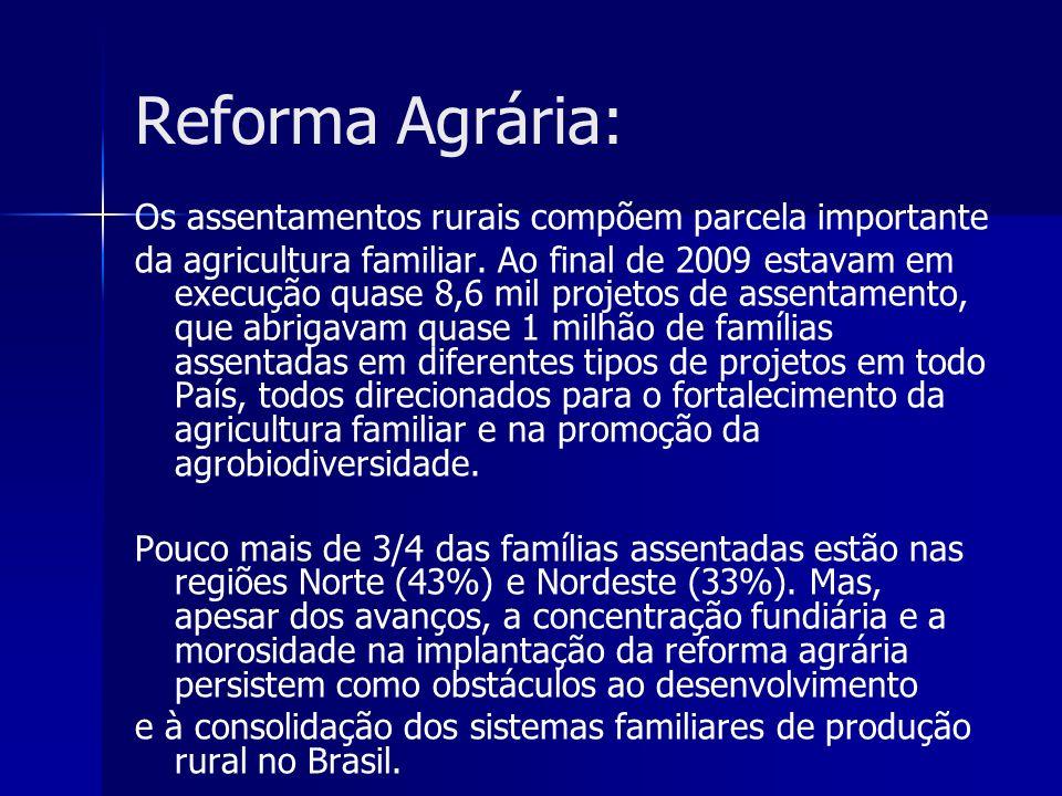 Reforma Agrária: Os assentamentos rurais compõem parcela importante da agricultura familiar. Ao final de 2009 estavam em execução quase 8,6 mil projet