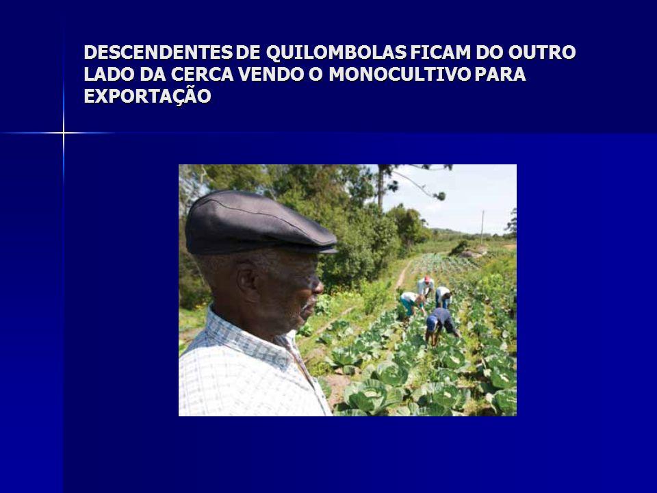 Regularização fundiária de terras indígenas: Das 611 terras indígenas do País, 488 estão em processo de demarcação (minimamente na fase delimitada), perfazendo 12,4% do total do território brasileiro.