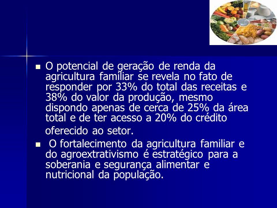 O potencial de geração de renda da agricultura familiar se revela no fato de responder por 33% do total das receitas e 38% do valor da produção, mesmo