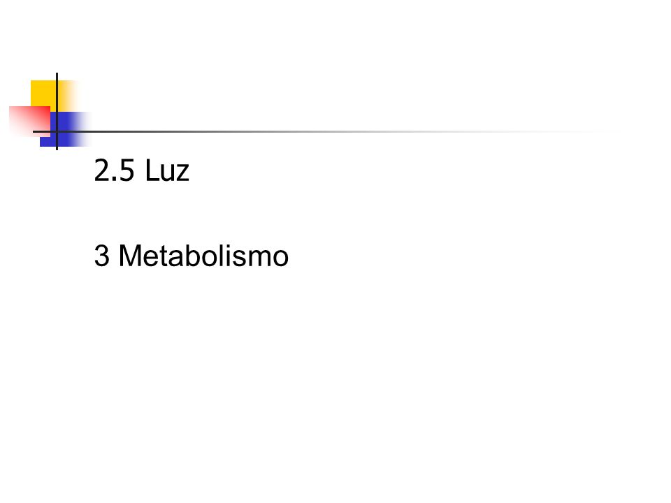 2.5 Luz 3 Metabolismo